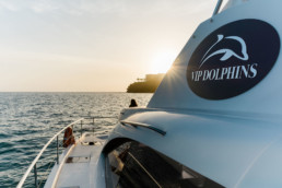 Photo report for V I P Dolphins - Photos by Benjamin BEGIN (2)